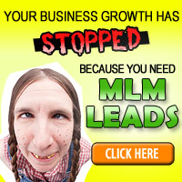 How To Get The Most Out Of Your MLM Leads