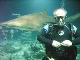 Don Reid Swimming With Sharks