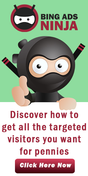 Bing Ads Ninja Guide